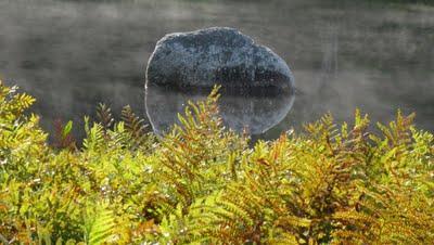 Mersey River Chalets Nove Scotia
