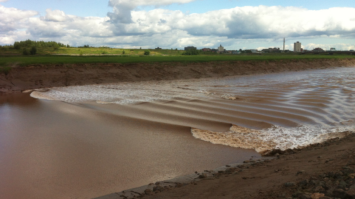 The Tidal Bore In Riverview New Brunswick Travels