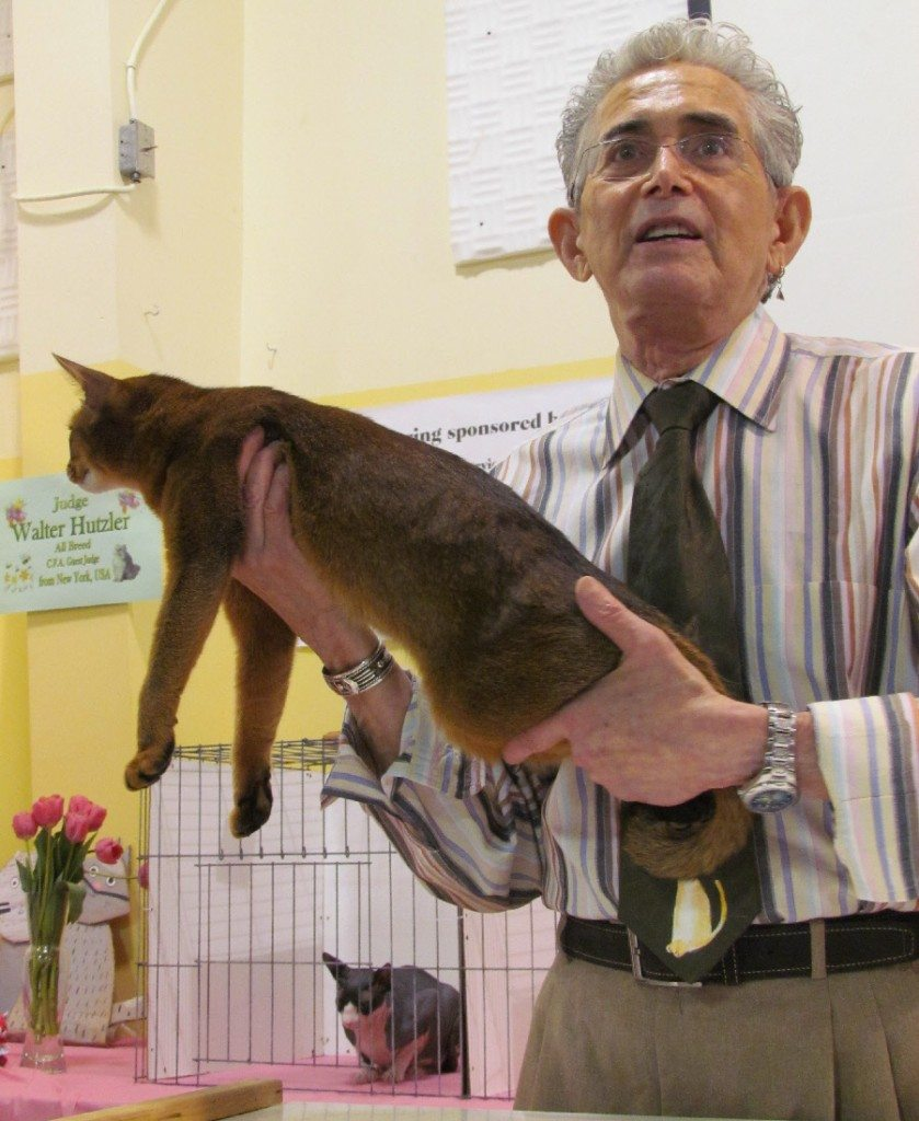 Walter Hutzler judging at the first annual Spring Has Sprung Riverview Cat Show