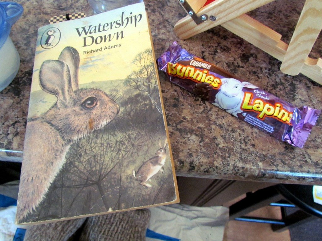 What could be more appropriate on Easter Sunday than reading Watership Down and have some Cadbury Bunnies!
