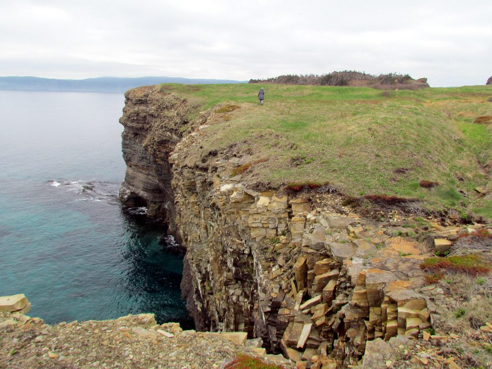 Walking the cliffs of Bell Island.
