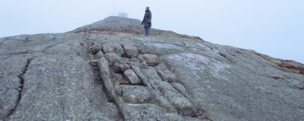 The fog was thick as we trekked up to Signal Hill on our first night in St. John's
