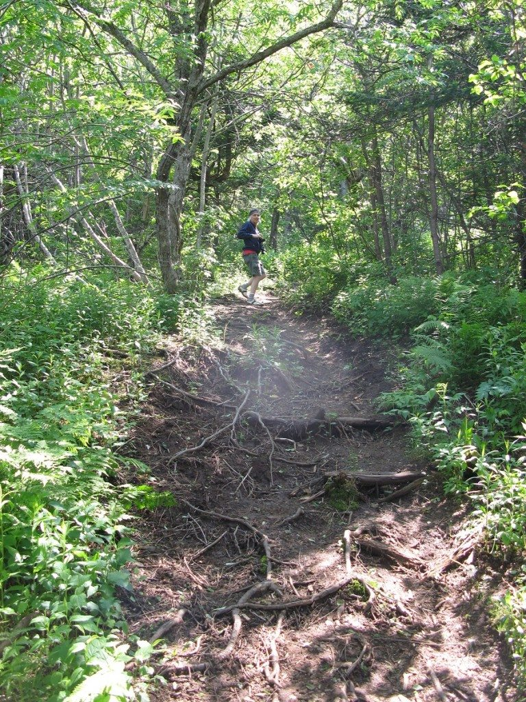 Partridge Island Trail