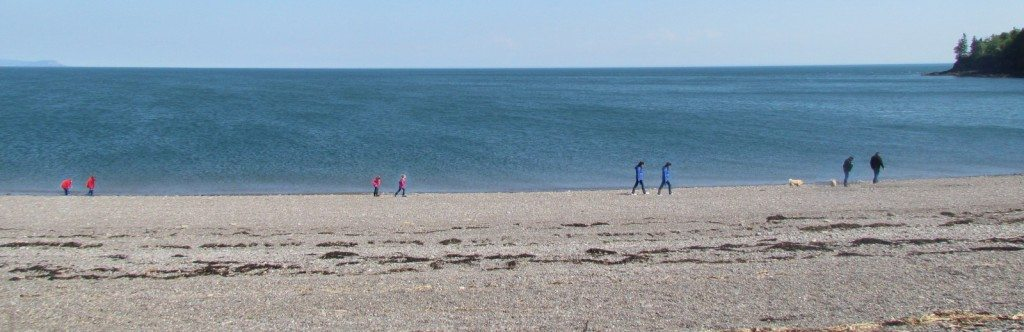 Walking on the beach towards Partridge Island, a family wanders inside their separate spaces towards the future.