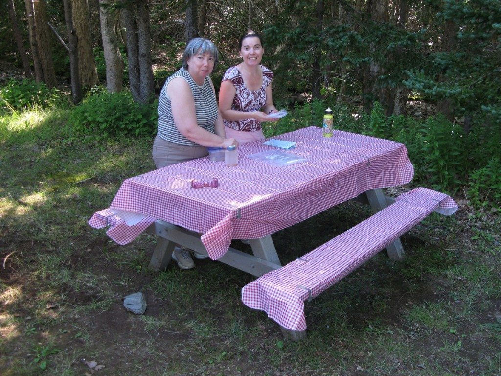 DD and Mama D picnic