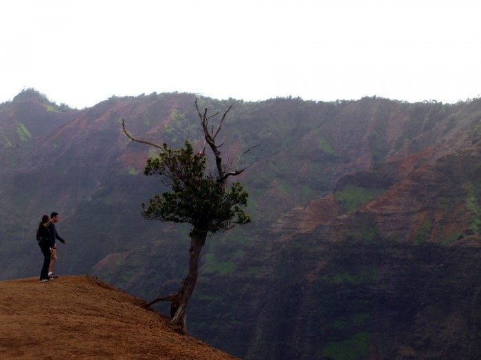 The view at the end of the trail into the Waimea canyon is utterly mind-blowing!