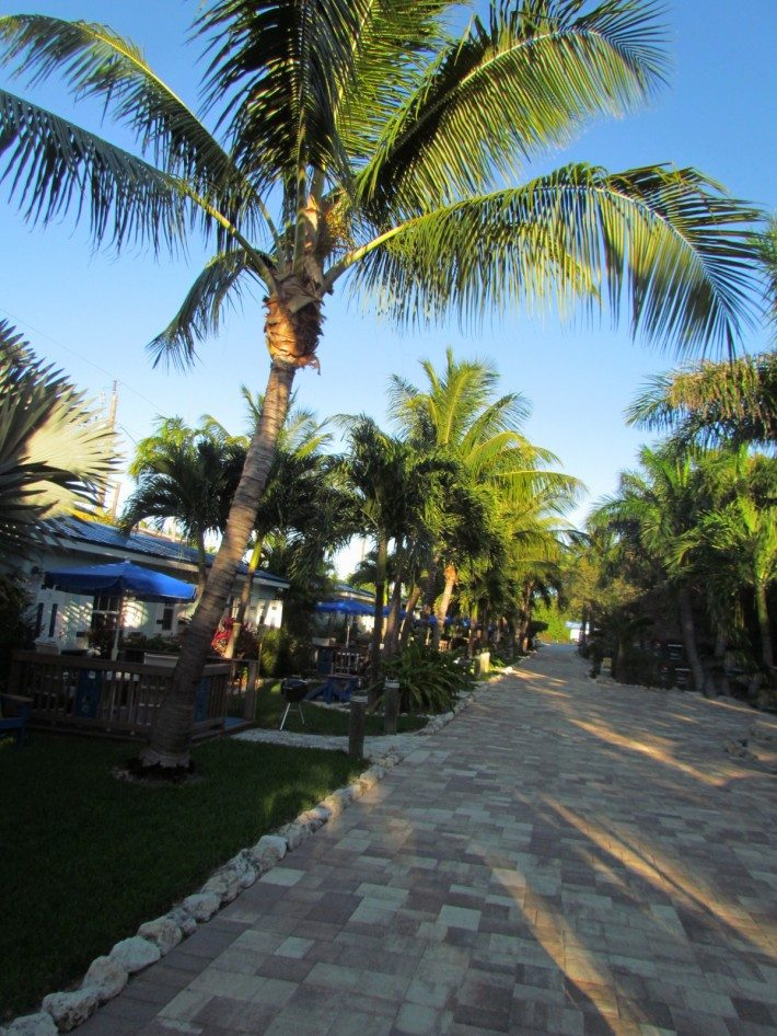 The Island Bay Resort is immaculate and such a perfect oasis for our vacation.