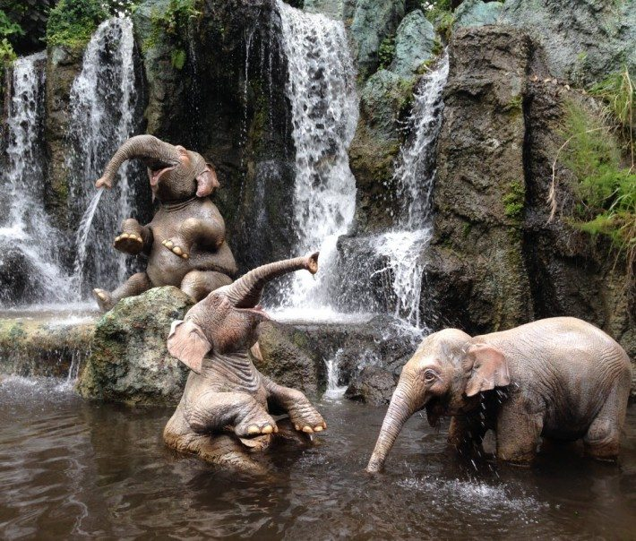 The Jungle Cruise was one of my favorites today I already want to do it again! The elephants playing near the waterfall was so sweet!