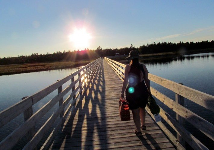 Going home after a hot day at the beach. Couldn't believe it was 27 degrees at the end of September! We'll be back next year, Kouchibouguak is such an awesome place for birds and beaches and biking!
