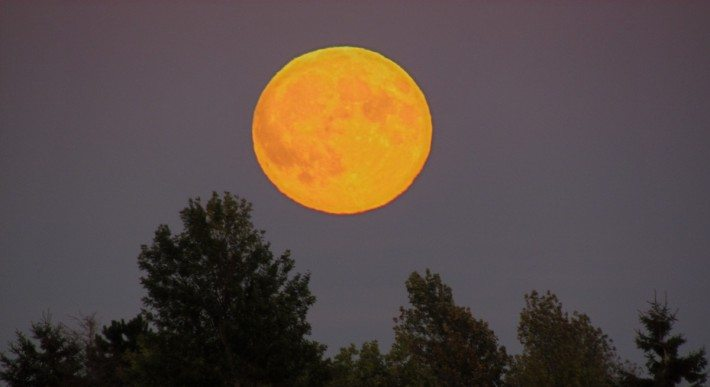 The full moon rose at 6:58 PM and we watched her rise above the Peticodiac.